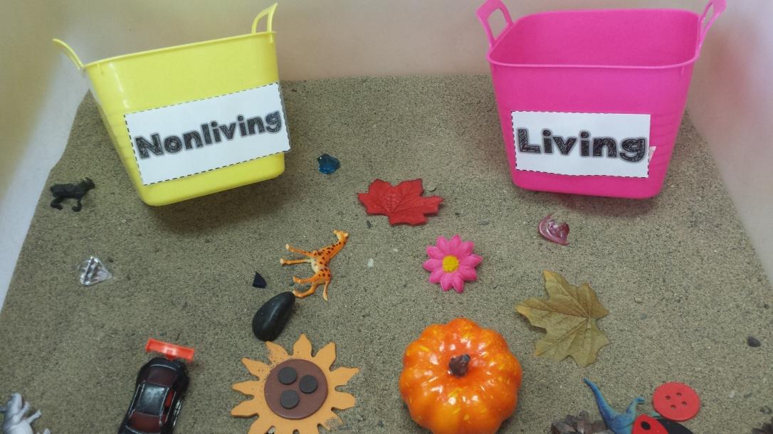 livingandnonliving