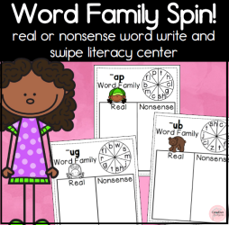 Word Family Write and swipe square preview