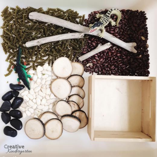 Crocodile and alligator sensory bin for kindergarten science. Hands-on and fun learning!